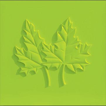 树叶硅藻泥图案大全