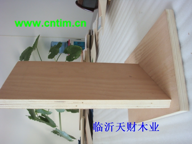 CARB P2板式家具板,CARB P2门板/抽屉板/橱柜板