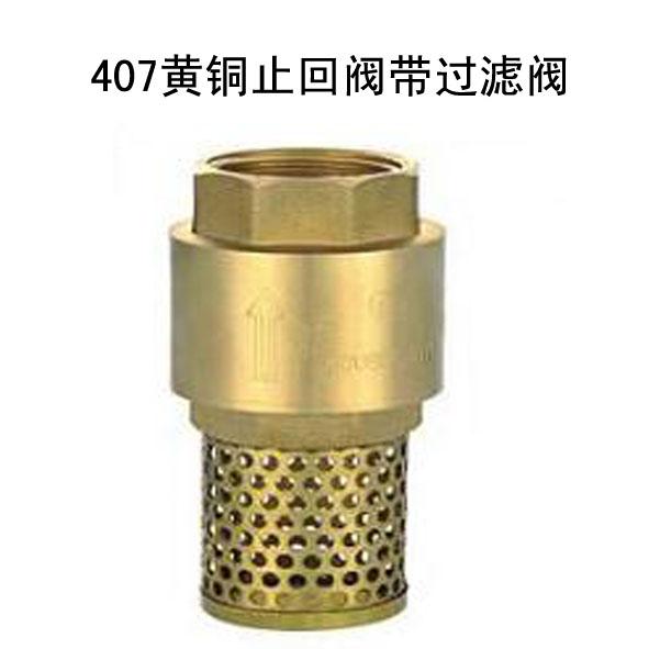 407黄铜止回阀带过滤阀。 浙江富康阀门有限公