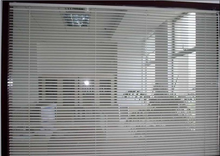 2009年10月,沈阳特变电工有限公司新办公楼横百叶工程