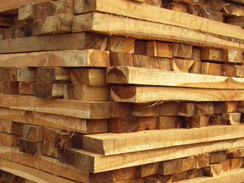 沈阳建筑木材木方批发