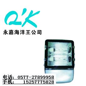 海洋王NFC9131_海洋王NFC9131_海洋王投光灯