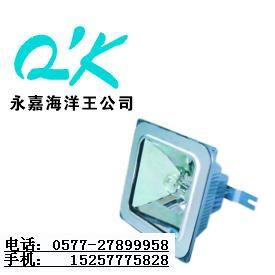 海洋王NFC9100_海洋王NFC9100_海洋王投光灯