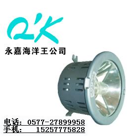 NFC9110NW1_NFC9110NW1_海洋王顶灯