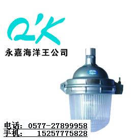 海洋王NFC9112_海洋王NFC9112_海洋王顶灯