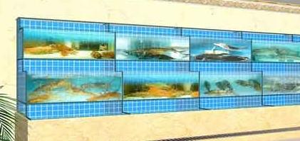 玻璃海鲜鱼池