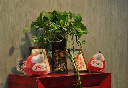 杭州硅藻泥品牌系列-一帘幽梦