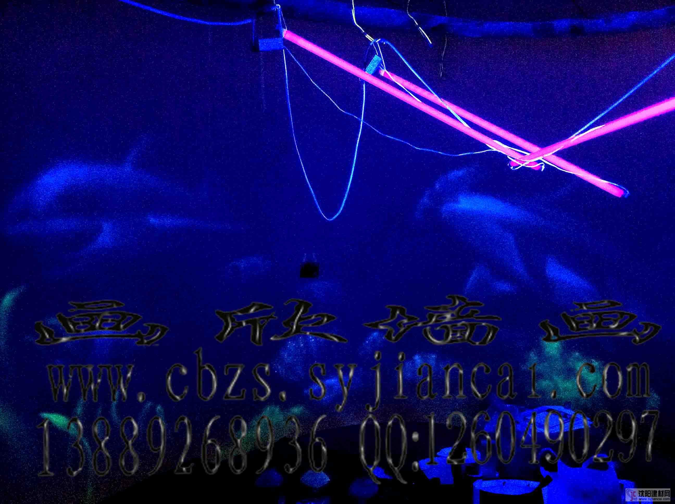 大型酒店宾馆商场手绘荧光画隐形画工程