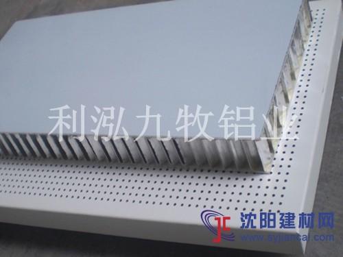 铝蜂窝幕墙板/铝蜂窝天花板/铝蜂窝吊顶板
