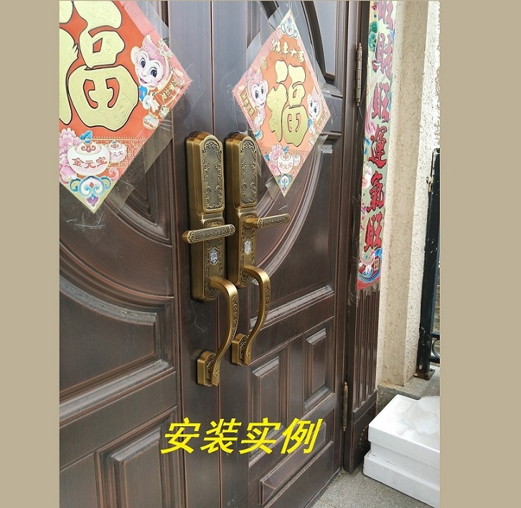 别墅双开防盗门指纹锁