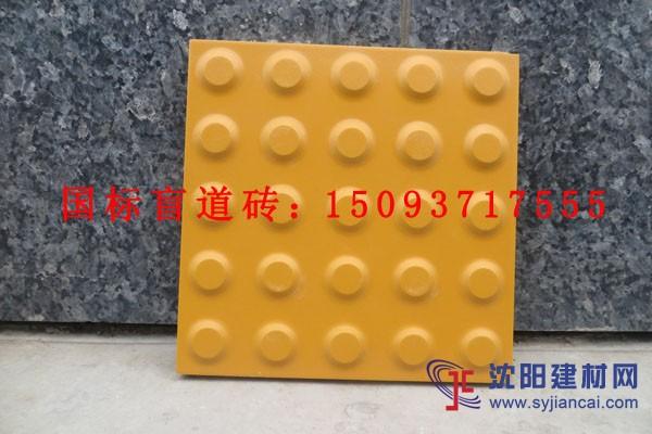供应优质站台盲道砖|全瓷盲道砖|盲道砖生产厂家
