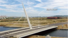 翔凤河桥项目