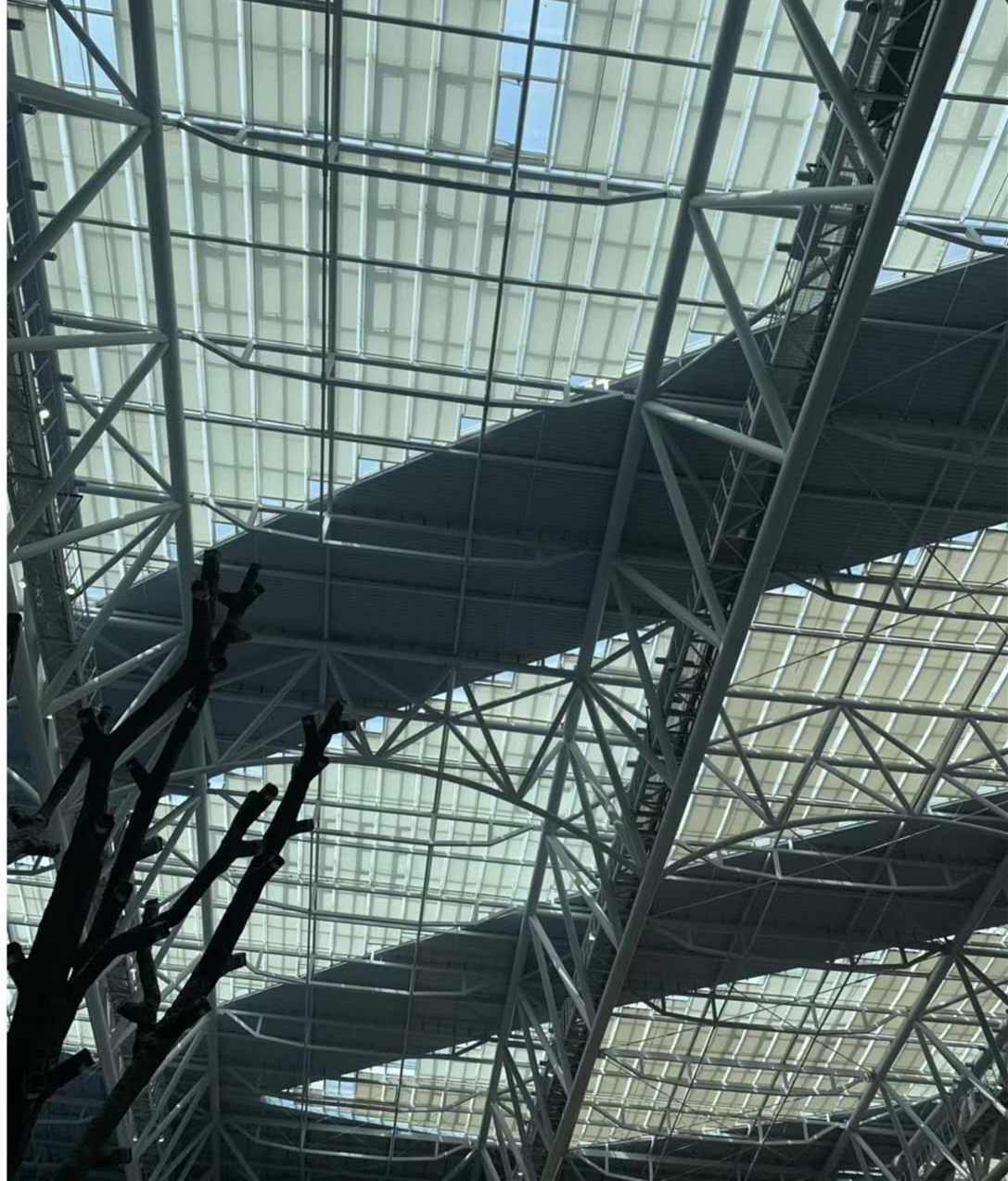 乐虎国际娱乐app下载大型天幕蓬如何安装,天幕安装过程